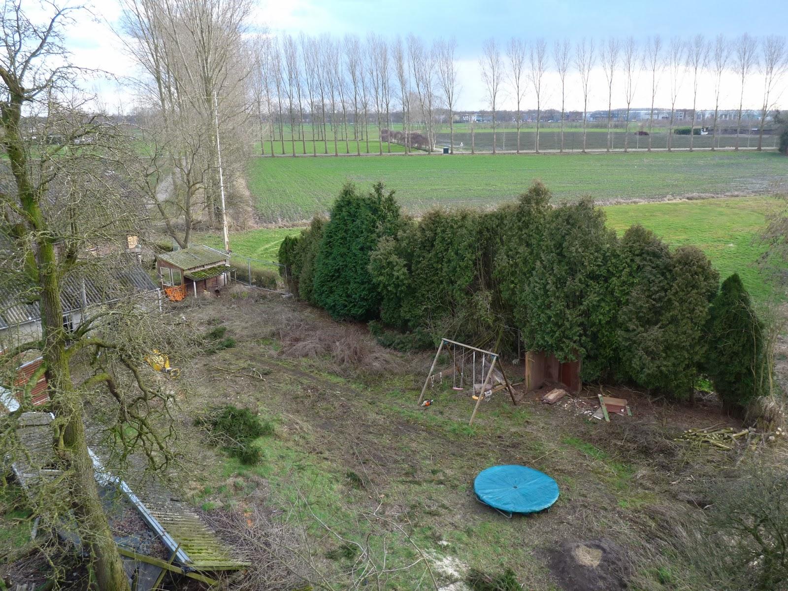 Asbest inspectie en bomen verwijderen