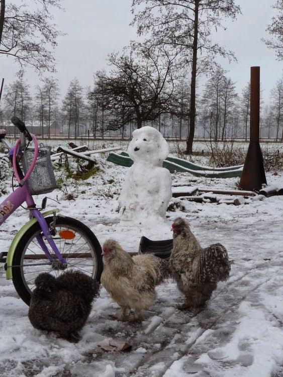 Een jarige! En sneeuw!